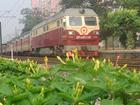 优德w88手机官网到深圳货物托运往返--安全快捷方便的运输服务